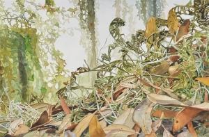 Resurrection-Ferns-Brays-Island-7-17-15x22_LG